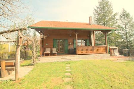 Villa Andy Mreznica - Hus