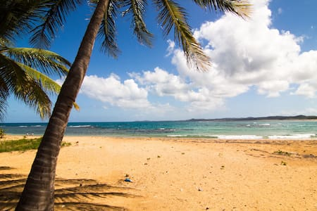 Beachfront Apartment in Luquillo