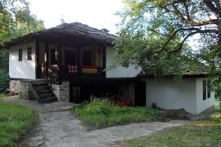"""""""Къща на архитекта""""  с. Боженци - Villa"""