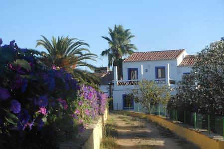 Horta do Laranjal - o Figo - Penzion (B&B)
