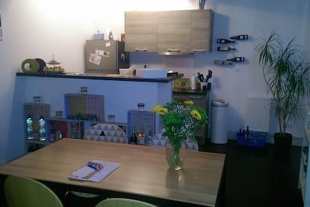 Chambre dans bel appartement centre ville - Apartment