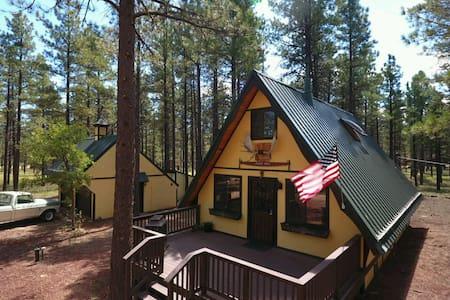 Cozy Mountain Cabin in Williams, AZ - Kisház