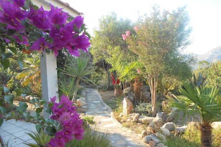 Wildgarden - Guest House - Apartament
