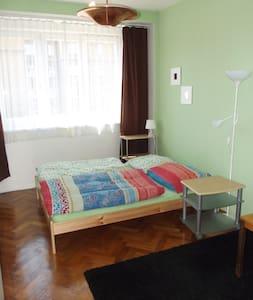 Cozy flat near the center of Prague - Apartment