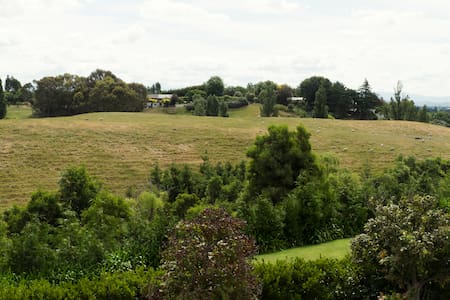 The Barn - Havelock North - Dom