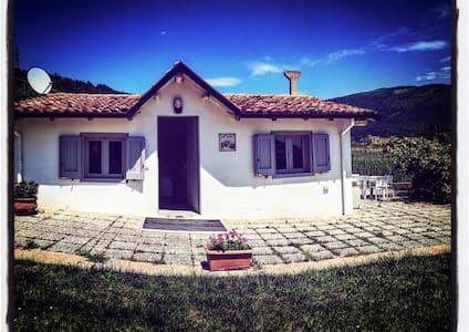 Villa le Mafalde love relax - Capriolo - Villa