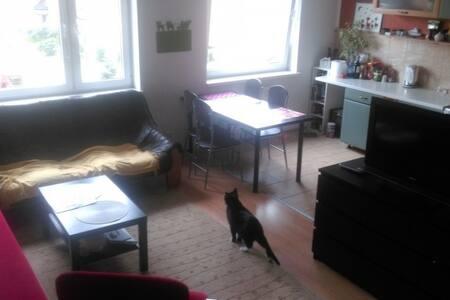 Mieszkanie 53m2 GDAŃSK - Gdańsk - Apartment