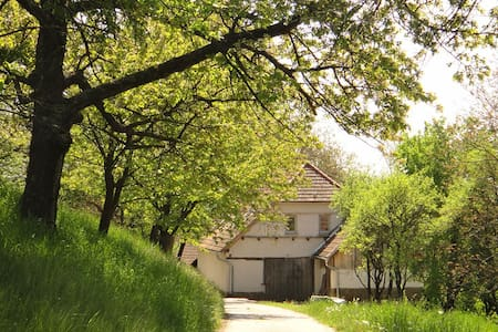 Spacious holiday lodge with fruit tree orchard - Brestovec