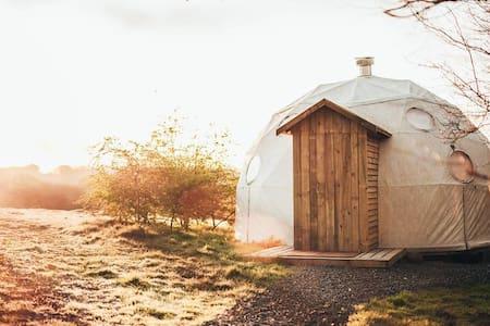 Luxury camping in Pembrokeshire, near Cardigan - Cardigan - Yurt