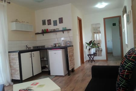 Holiday apartment with a large and fun garden - yavne'el - Pis