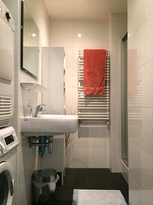 Fully equipped bathroom with sink and shower