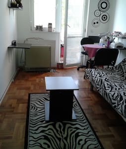 Spacious room near city center - Appartamento