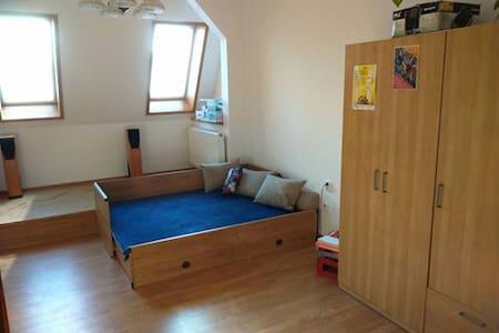 Prostorný pokoj v městském byte v centru Ostravy - Ostrava - Lägenhet
