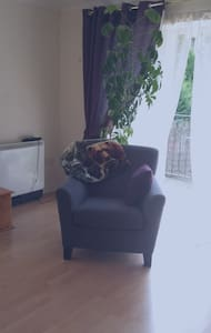 Dbl bedroom ensuite dining & kitchen area spacious - Dublin - Apartment