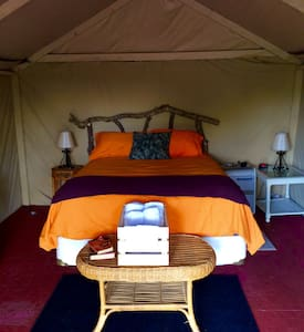 Riverfront Camo Glamp Tent Adventure! - Tent