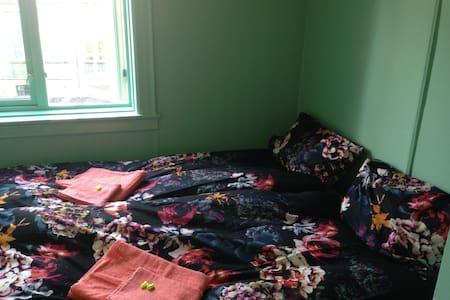 Central and quiet room in beautiful St Hanshaugen - Apartament