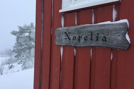 Koselig hytte sentralt på Norefjell - Norelia