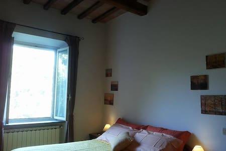 Le Magnolie - centro storico Todi - Todi