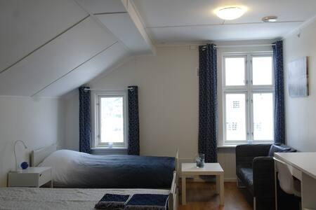 Sandefjord, cozy room with Kitchenette - Sandefjord