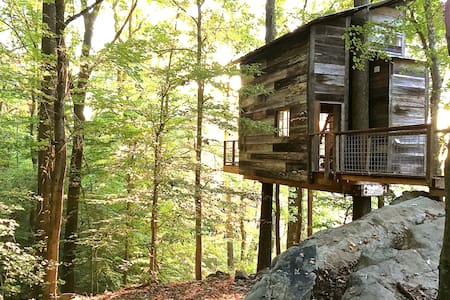 Treetop Hideaways  - Treehouse