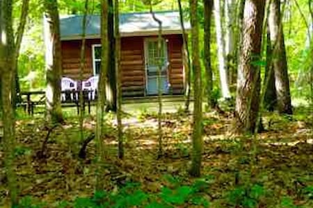 Nestled in the woods quaint Cabin (K1) - Township of Branch - Zomerhuis/Cottage