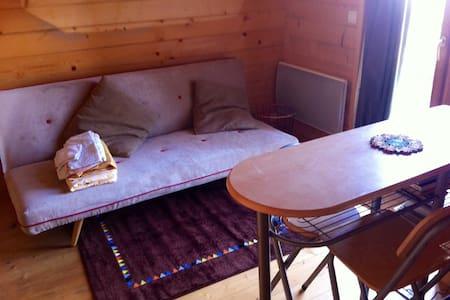 studio aménagé attenant maison chalet jardin 4 per - Saint-Étienne - House