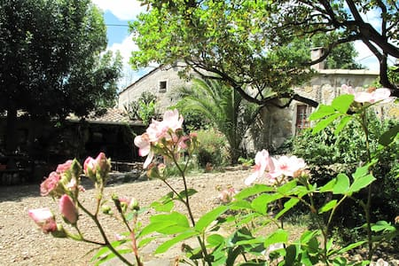 Typical 3 house stone made ,from 19 century ,located inside National Park of Languedoc.Inside antic furniture,decor style of Occitane South France.Our farm is large of 3 hectare of land,with fruits trees,Lavander field ,vegetable  garden bio.