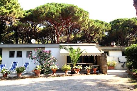 Roccamare - Villa Nannia - Roccamare - Hus