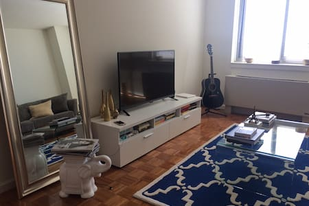 Luxurious 1 Bedroom Apt! - Long Island City - Apartment