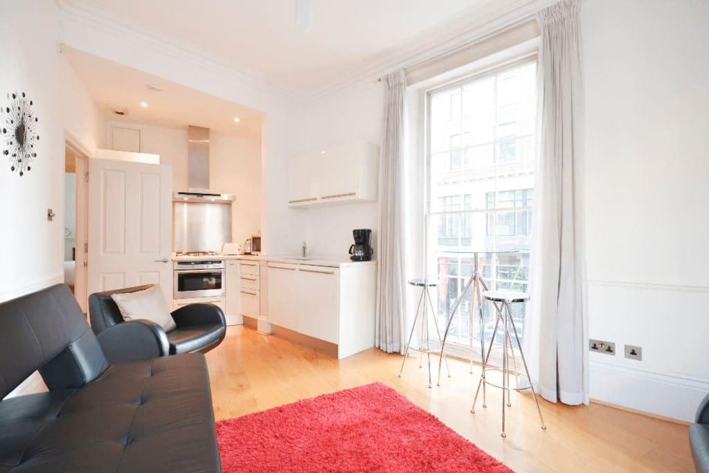 Historic Light & Lofty Apartment