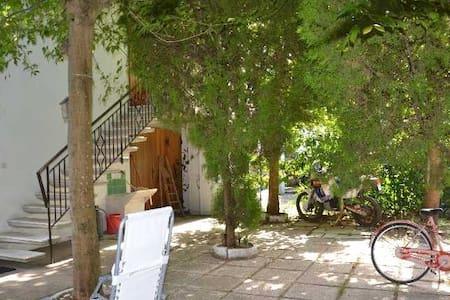 Villa con giardino a 100m dalla spiaggia - Sant'Agata sul Santerno