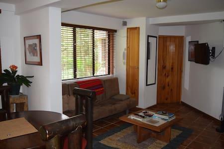Fully Equipped Apartment in Escazú - Escazu - Apartment
