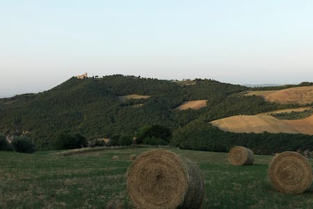 IL TRAMONTO DI GRAZIELLA - San Venanzo - Apartment