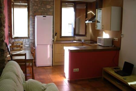Lloguer de casa a Talarn. - Talarn - Apartment