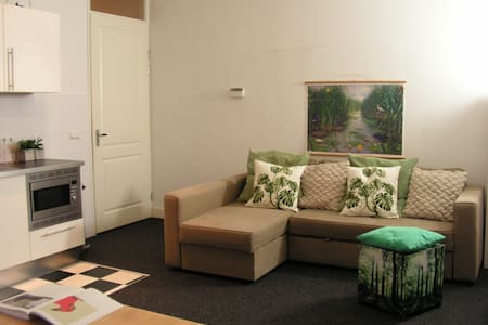 2 private rooms in the Centre! - Amsterdam
