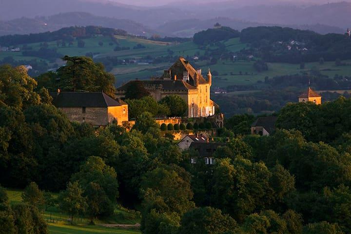 Chateau de Frontenay - Castle