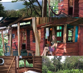 Up in the Hill - Silverback Cabin - Isla Bastimentos - Kabin