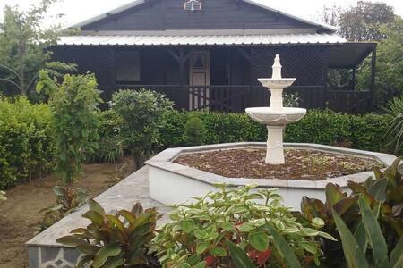 Casa do fontanário - Ribeira Grande - Casa