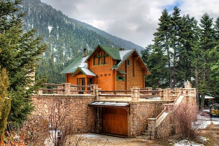 Parnassos Luxury Lodge near to Arahova and Delphi - Arachova - House