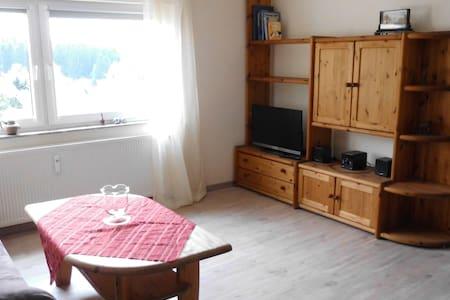 Helles und geräumiges Appartement am Eggegebirge - Altenbeken - Ortak mülk