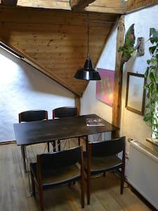 Ausgefallene & helle Dachwohnung in zentraler Lage - Appartement
