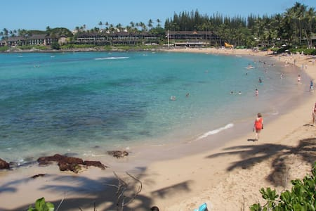 Napili Shores:1 BR/Steps to beach/snorkel! Whales! - Lahaina