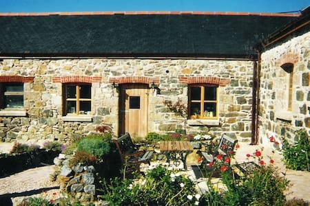 Joe's Barn - House