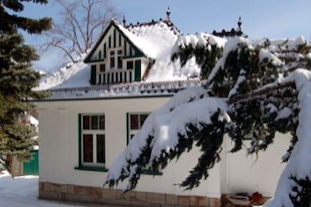 Kleine stilvolle Jugendstilvilla - House