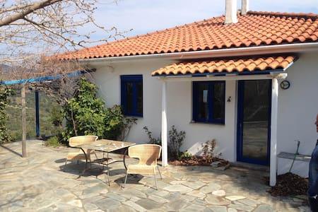 Villa Maxima - Potistika - Hus