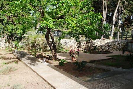 """Monolocale """"Casa Parco Pozzelle"""" - Bed & Breakfast"""