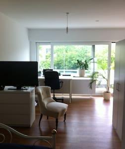 Helle Wohnung in Würzburg - Apartment