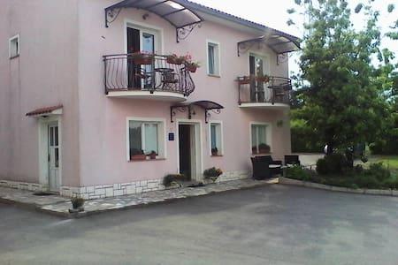 Pansion Surina Guest House Rupa - Apartamento