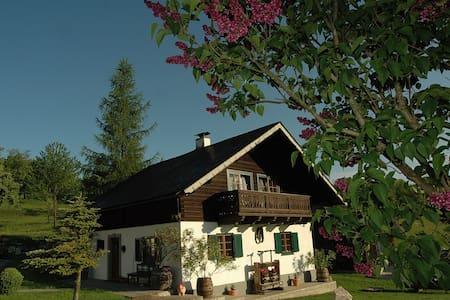 Ferienhaus am Attersee mit eigenen Badestrand - Ház