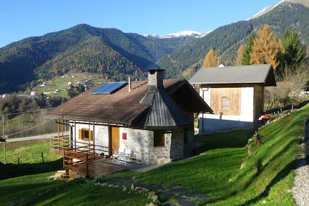 Chalet in the forest - Canal San Bovo - Bed & Breakfast